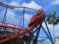 Busch Gardens Tampa Bay Scorpion Attraction Ride Details Parkinfo2go