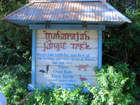 Walt Disney World's Animal Kingdom - Maharajah Jungle Trek