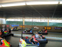 Lake Compounce - Bumper Cars